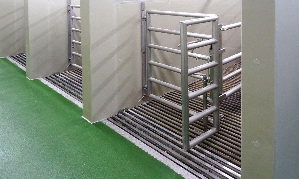 Rinderstall mit neuer Bodenbeschichtung